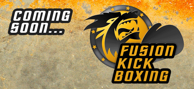 Fusion kick boxing Classes